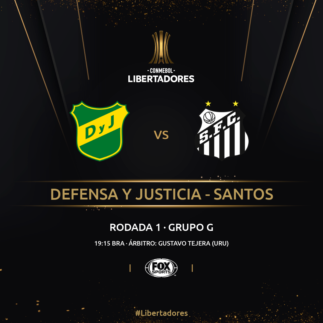 defensa vs santos