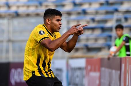 Rodney Redes - Guaraní