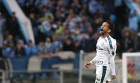 Gustavo Scarpa Palmeiras