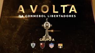 Volta Libertadores: Grupo A