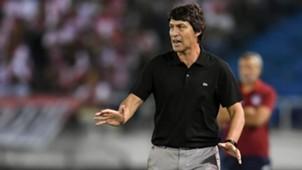 AFP Daniel Garnero Olimpia Copa Libertadores 2019