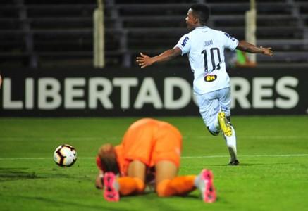 AFP Defensor Atlético-MG Cazares Copa Libertadores 2019