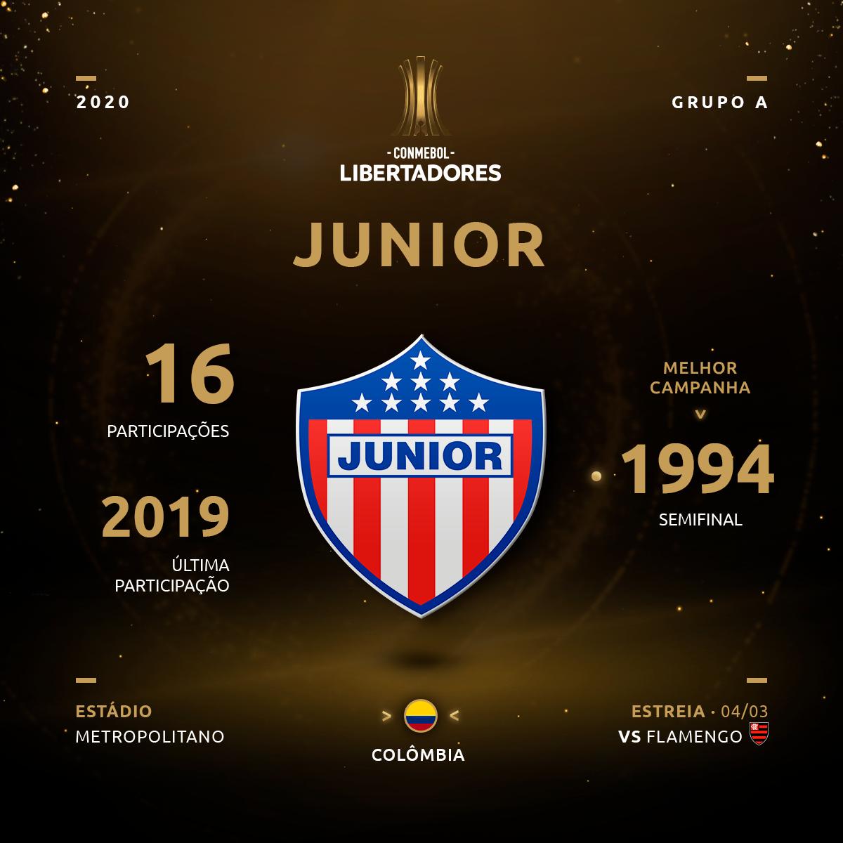 Junior Histórico Libertadores