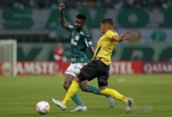 AFP Palmeiras Guaraní Libertadores 2020