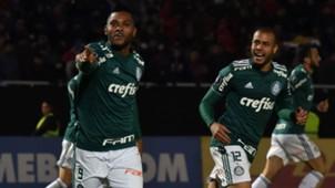 AFP Cerro Porteño Palmeiras Copa Libertadores Miguel Borja