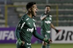Bolívar - Palmeiras