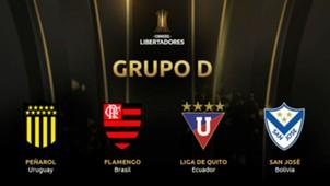 Grupo D Copa CONMEBOL Libertadores
