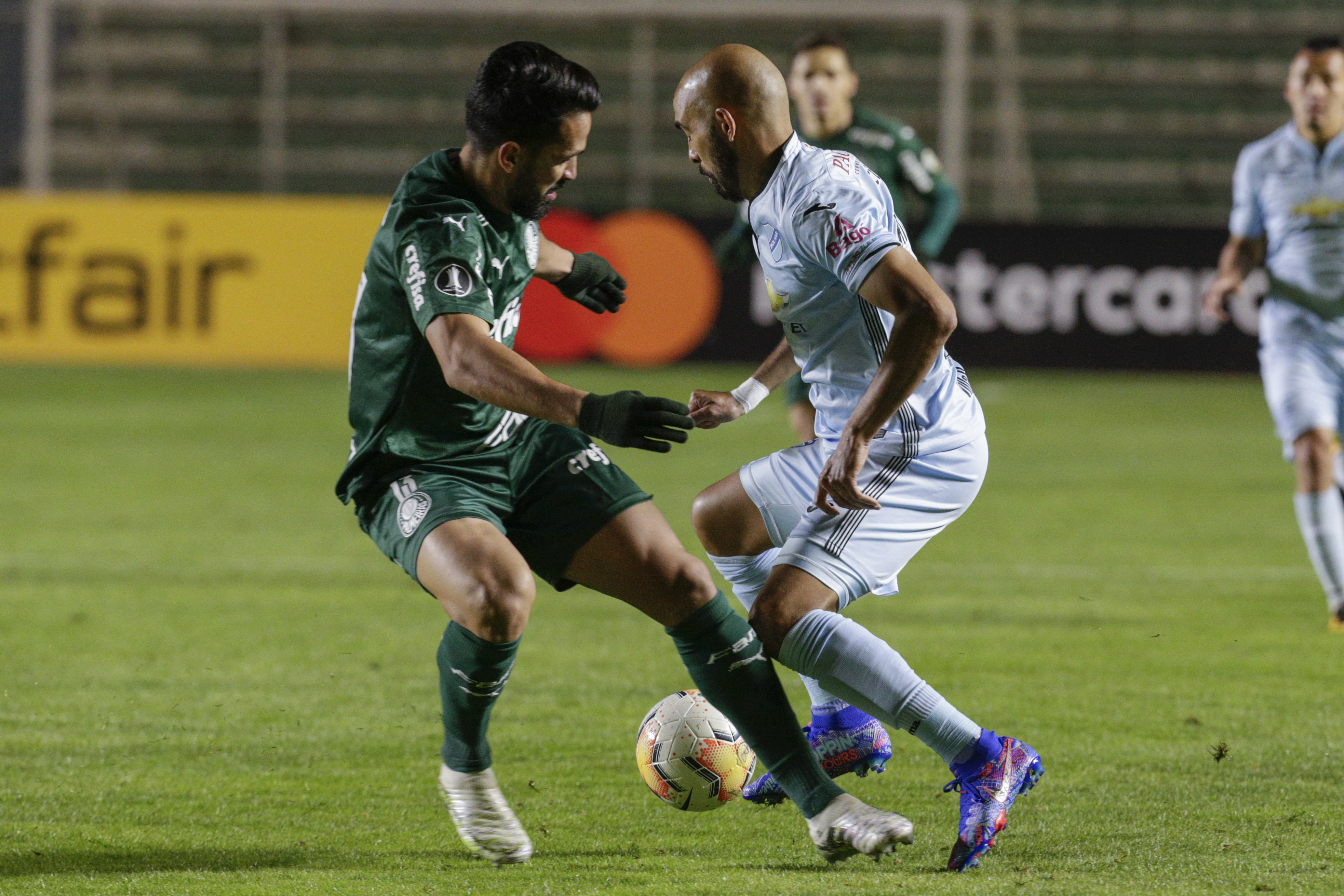 Palmeiras - Bolívar