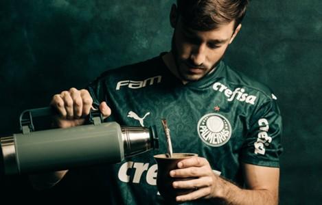 Viña - Palmeiras