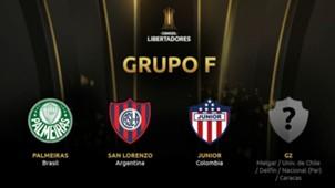 Grupo F Copa Libertadores 2019