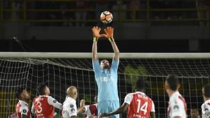 AFP Franco Armani River Copa Libertadores 2018