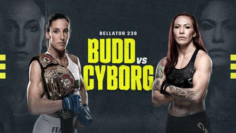 DN-Budd-vs-Cyborg2
