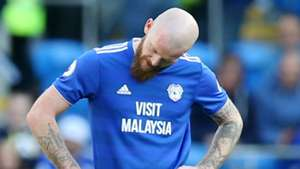 Aron Gunnarsson Cardiff City 2018-19