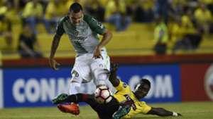 Alejandro Bernal Atlético Nacional Copa Libertadores