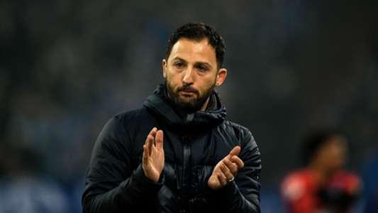 Neue Spieler Schalke