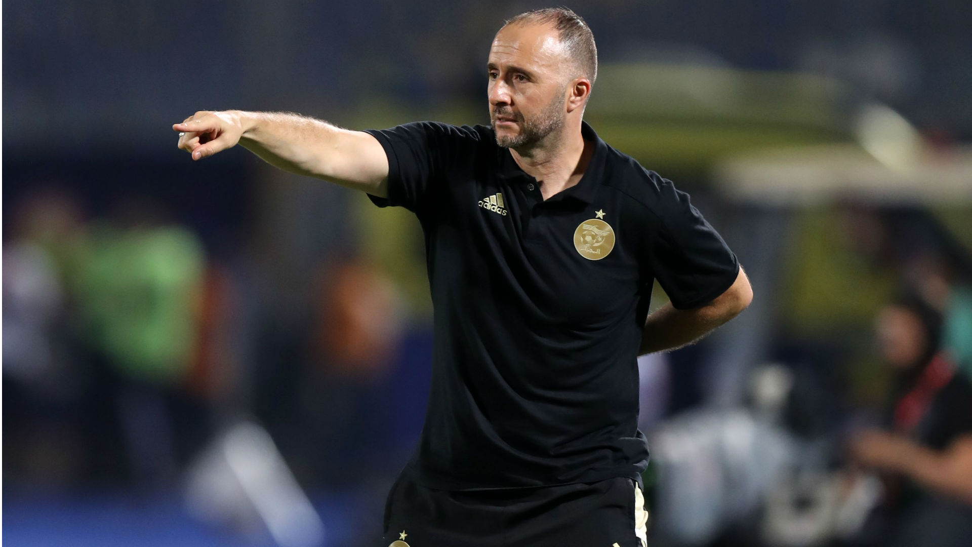 Belmadi says Algeria will dream big if they participate in 2022 World Cup