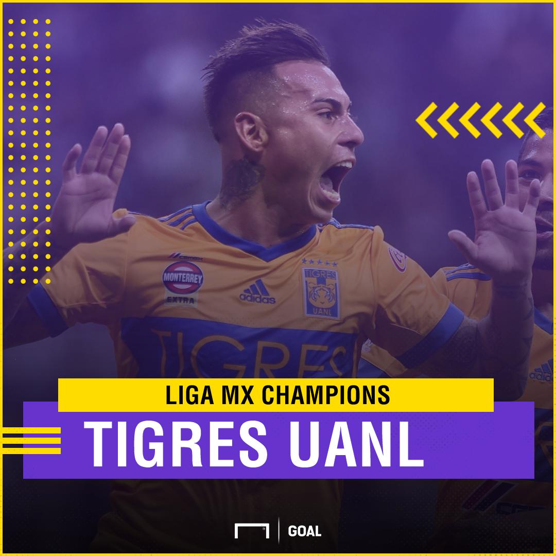 Tigres Liga MX champion GFX