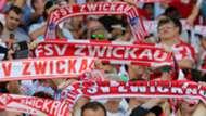 FSV Zwickau fans