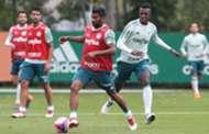 Treino Palmeiras 21032018