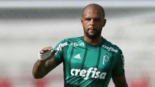 Felipe Melo Botafogo-SP Palmeiras Paulista 21012018