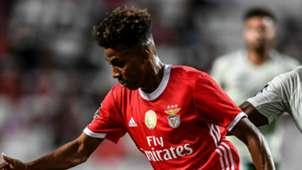Gedson Fernandes Benfica 2019-20