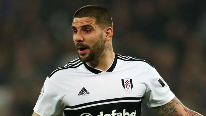 Aleksandar Mitrovic Fulham 2018-19