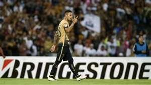 Pumas Libertadores