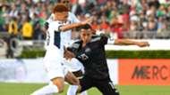 Andrés Guardado Selección mexicana 150619