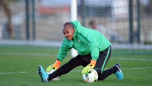 Chan Qualifiers: Ezenwa headlines 20-man Nigeria roster for Togo tie