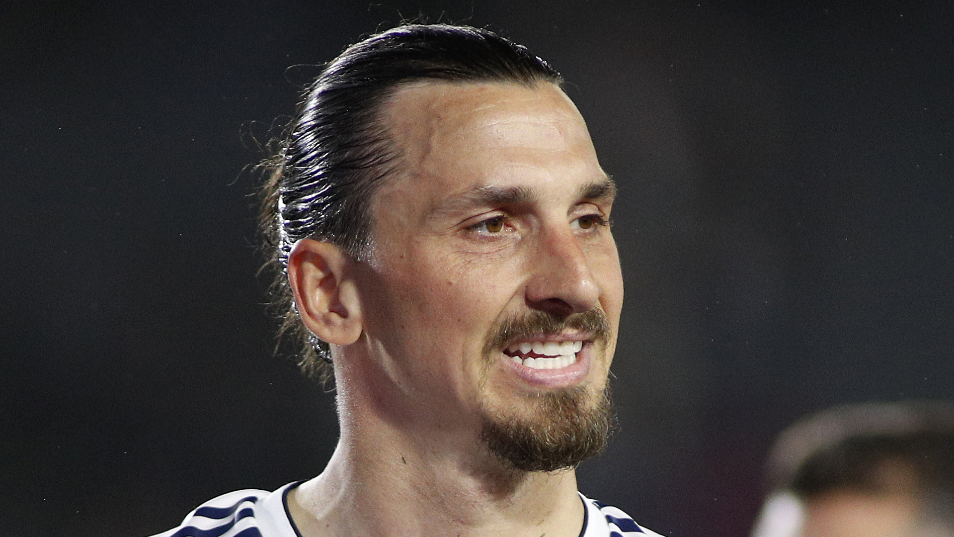 Ibrahimovic open to Bologna move, says Serie A side's sporting director