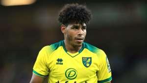 Onel Hernandez Norwich City 2019
