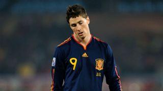 Fernando Torres Spain 2010 World Cup