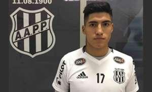 Luis Ali