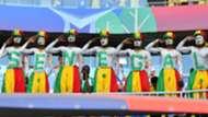 Senegal fans