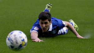 Fernando Forestieri Sheffield Wednesday