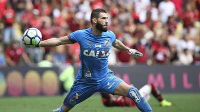 Vanderlei Flamengo Santos Brasileirão Série A 15112018