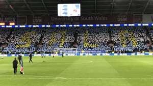 homenaje Emilio Sala Cardiff City 02022019