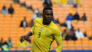 Bafana Bafana, Morgan Gould
