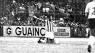 Pelé despedida Santos
