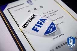 FIFA 국제 심판