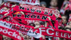 Köln Koln Cologne Fans