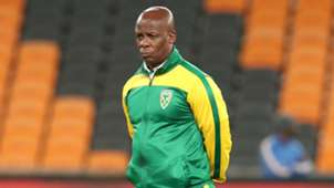 Mandla Ncikazi, Assistant coach of Golden Arrows, April 2019