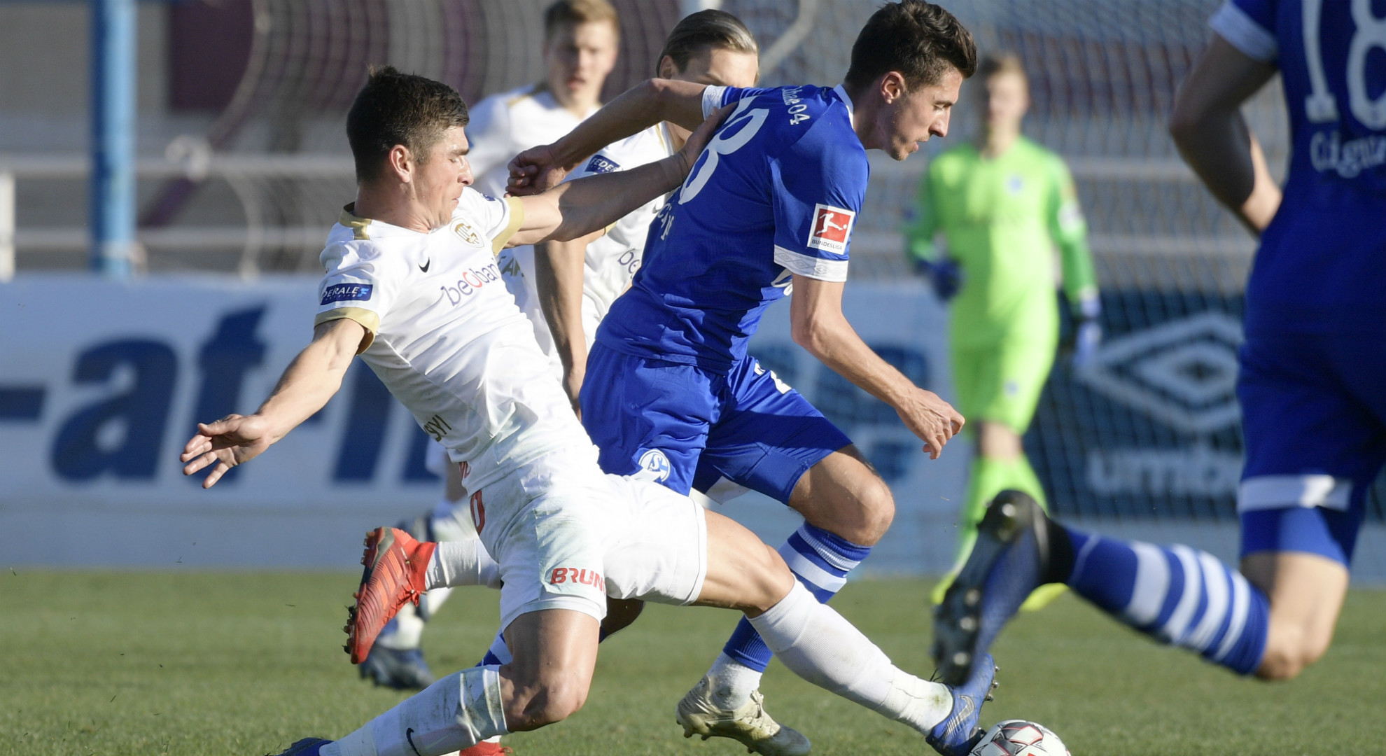 Alessandro Schöpf Schalke 04 KRC Genk 11012018