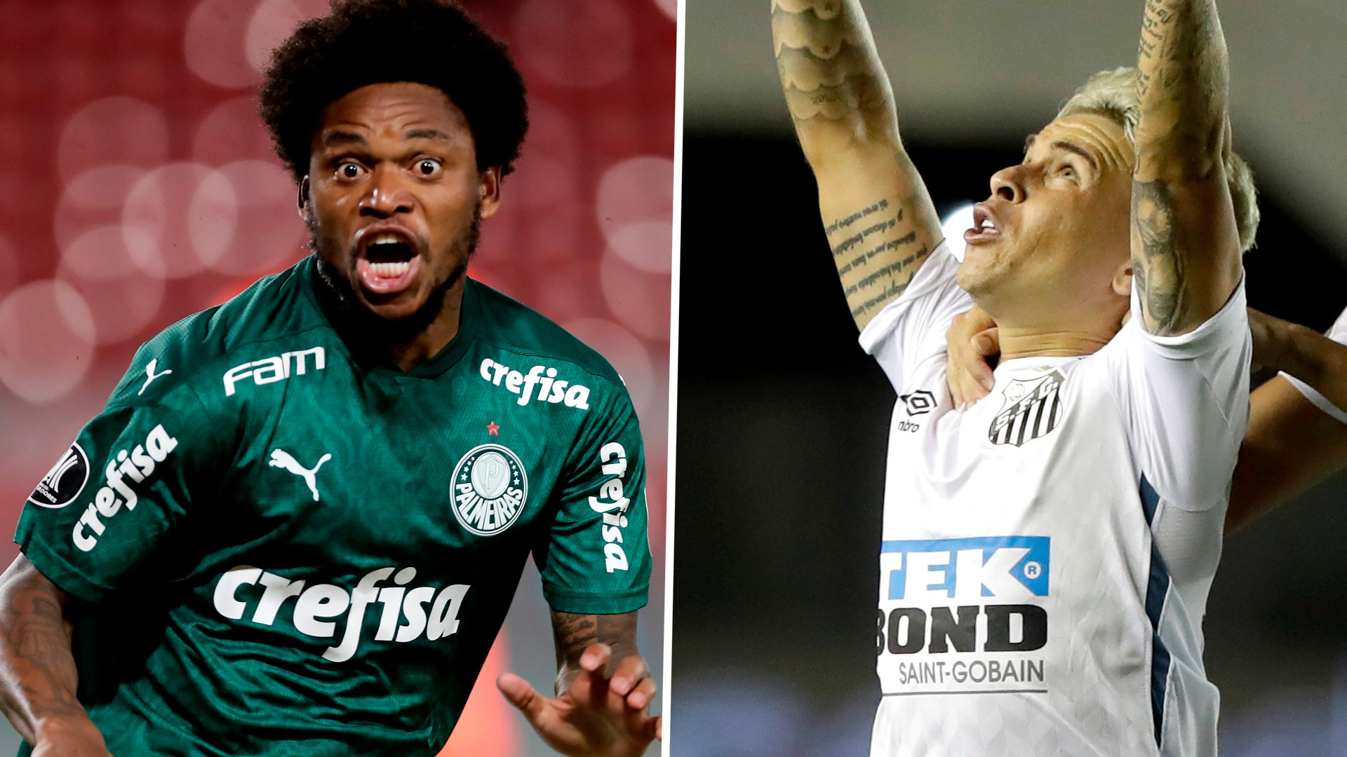 Palmeiras vs Santos on US TV: How to watch and live stream CONMEBOL Copa Libertadores