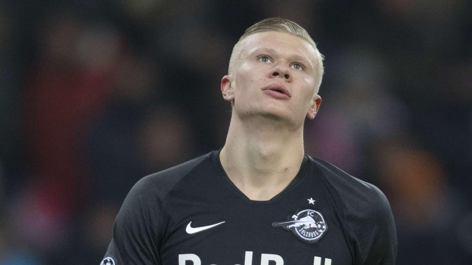 Man Utd don't need Haaland – berbatov