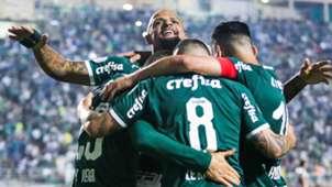 Palmeiras 30052019