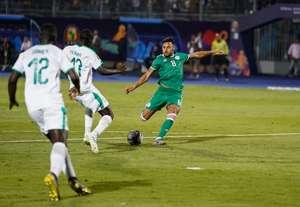 يوسف البلايلي - الجزائر - السنغال