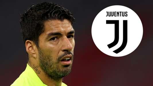 Juventus bị điều tra vụ Suarez gian lận thi cử