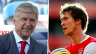 Arsene Wenger Alexander Hleb Arsenal composite