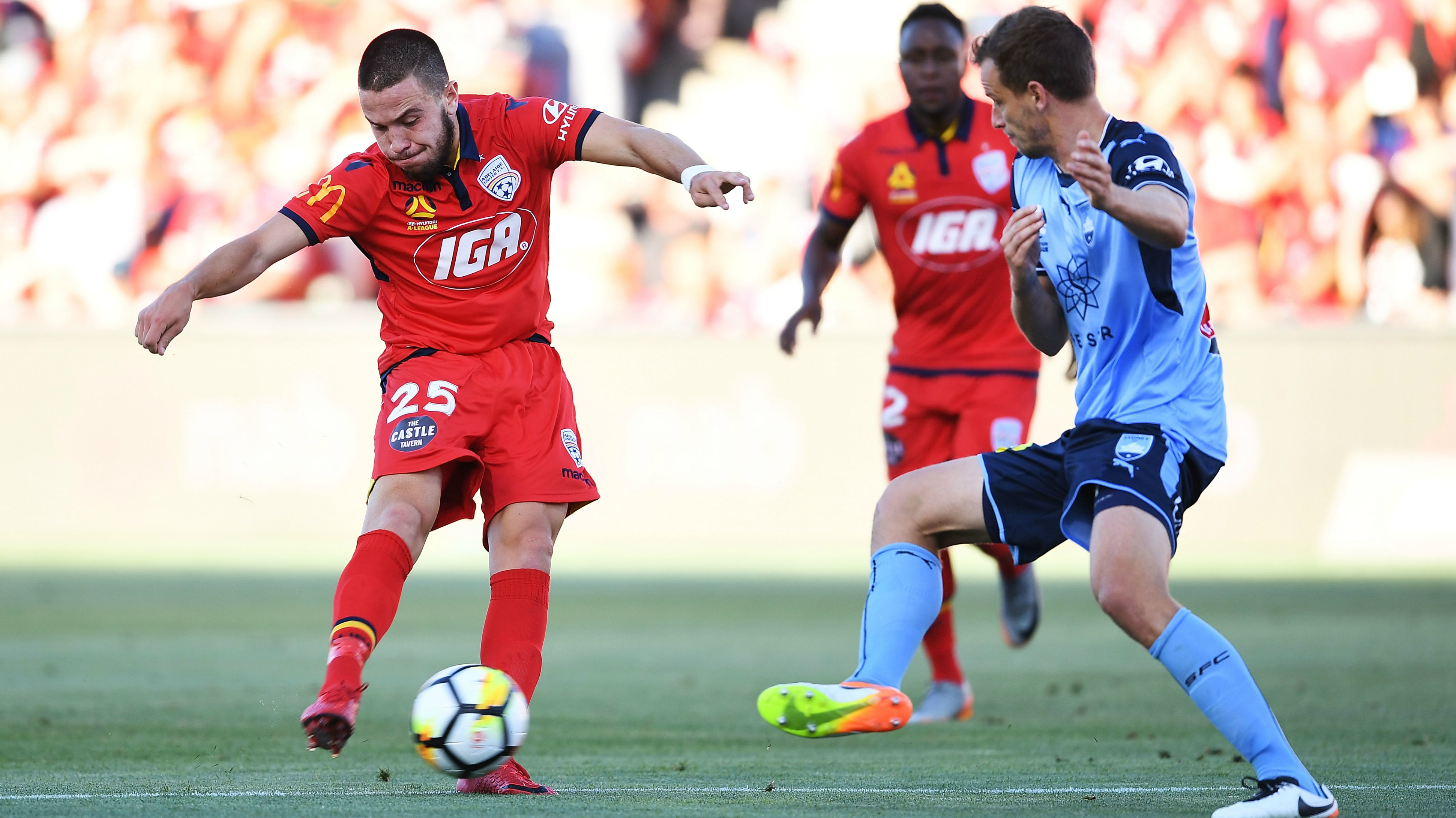 Apostolos Stamatelopoulos Adelaide United